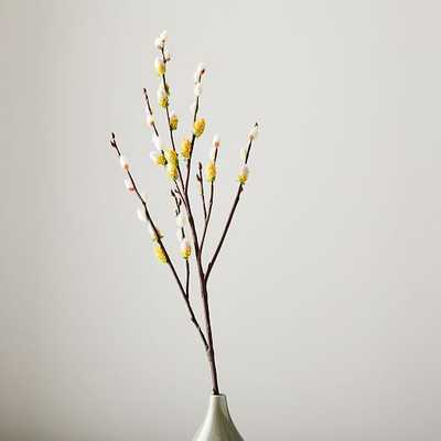 Faux Pussy Willow Branch - West Elm