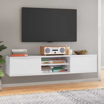Agora Floating TV Stand for TVs up to 65 inches - AllModern