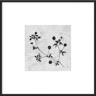 "Field Flower 6""x6"", 8"" x 8"" final framed size, black metal frame; with matte - Artfully Walls"