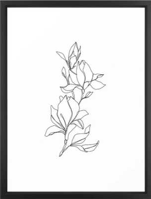 "Botanical Illustration Line Drawing, 20""x26"", Vector Black - Society6"