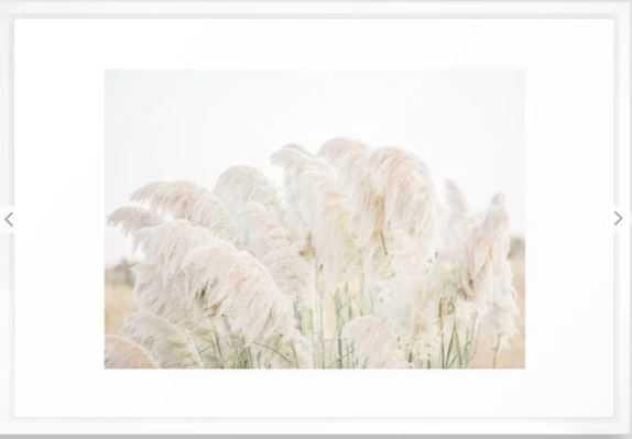 Natural Pampas Grass Framed Art Print - 26x38, Vector White - Society6