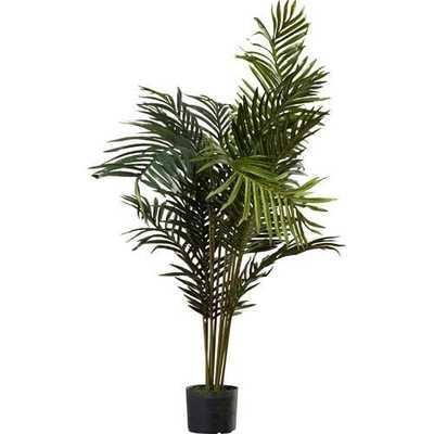 Esters Floor Palm Tree in Pot - Wayfair