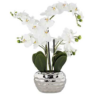 "White Phalaenopsis 23""H Faux Orchid in Silver Ceramic Pot - Lamps Plus"