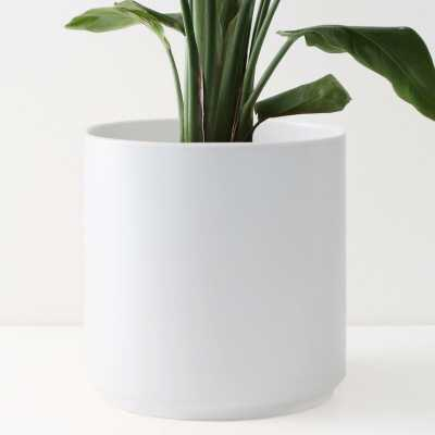 Peach & Pebble Modern Porcelain Pot Planter - Wayfair