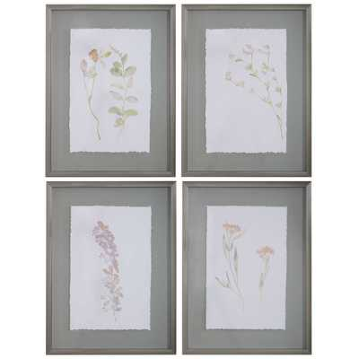 Flourish Framed Botanical Prints S/4 - Hudsonhill Foundry