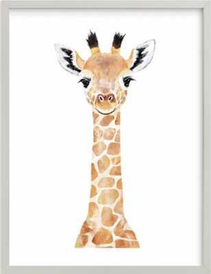 baby animal.giraffe Art Print 16 20 - Minted