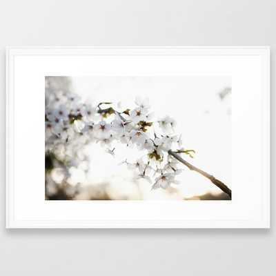 Cherry Tree Blossoms Framed Art Print - Society6