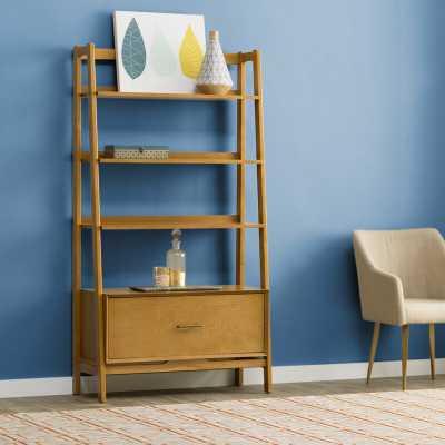 Dunkelberger Ladder Bookcase - AllModern