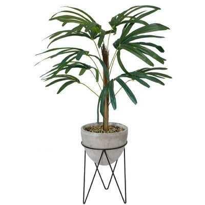 Palm Tree in Planter - Wayfair