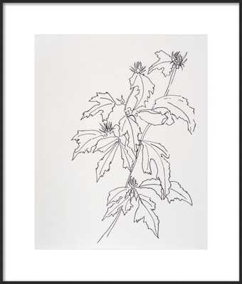 Leaves Rose of Sharon  BY CASEY CHALEM ANDERSON - Artfully Walls