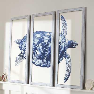 'Sea turtle' Triptych - Wayfair