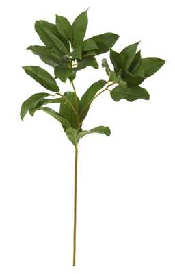 "23"" Laurel Leaf Artificial Spray (Set of 6) - Fiddle + Bloom"