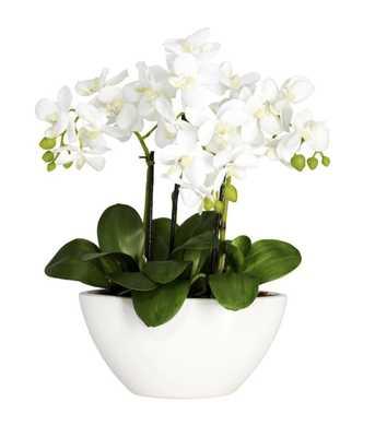 Phalaenopsis Silk Flower Arrangement - Fiddle + Bloom