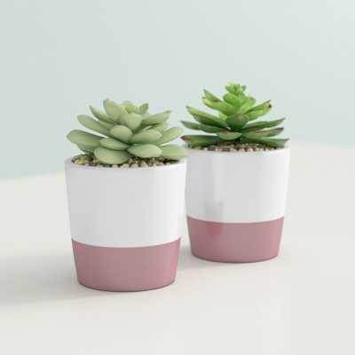 """3"""" Artificial Evergreen Succulent in Pot - Wayfair"""