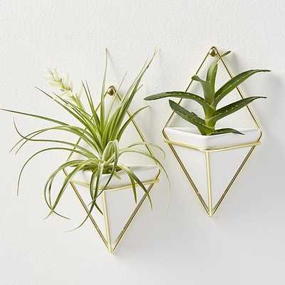 set of 2 trigg small wall vases - CB2
