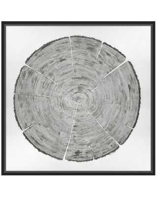 TRUNK GRAIN Framed Art - McGee & Co.