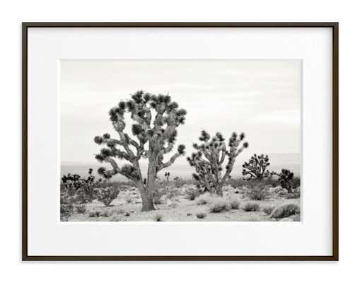 Joshua Tree - Minted