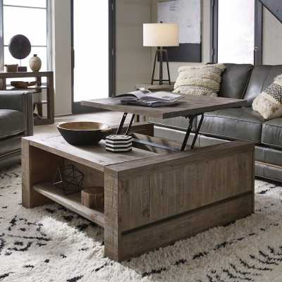 Norah Lift Top Coffee Table with Storage - Wayfair