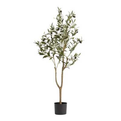 Faux Potted Olive Tree - World Market/Cost Plus