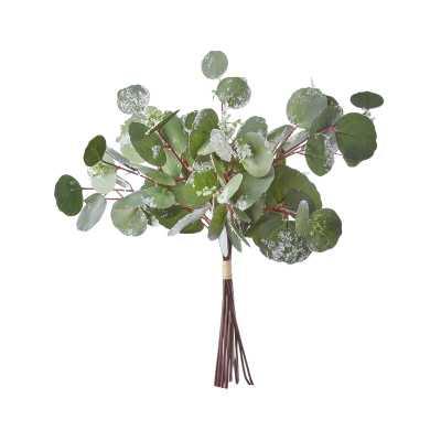 Frosted Eucalyptus Bundle Mixed Stems - Wayfair