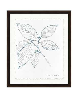 BLUE LEAF SKETCH 2 Framed Art - McGee & Co.