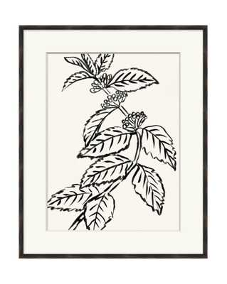 BLACK AND WHITE BOTANICAL 4 Framed Art - McGee & Co.