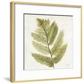 "Forest Ferns I - Ronda Ii Gold -  16"" x 16"" -  2.5"" Crisp - Bright White Mat -  Acrylic: Clear - - art.com"