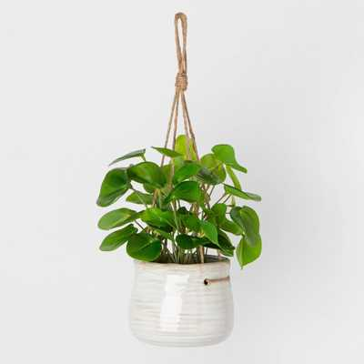 Faux Hanging Pilea Potted Plant - Hearth & Hand™ with Magnolia - Target