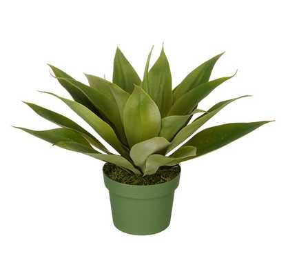 Faux Agave Plant in Planter Small - Wayfair