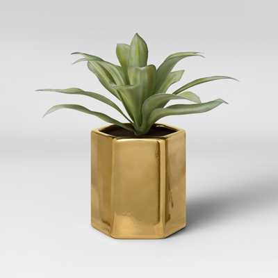 Artificial Small Plant with Gold Pot - Project 62™ - Target