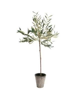 "FAUX POTTED OLIVE TREE, 30"" - McGee & Co."