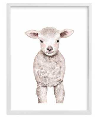 "Baby Animal Sheep, 8""x10"", White Wood Frame - Minted"