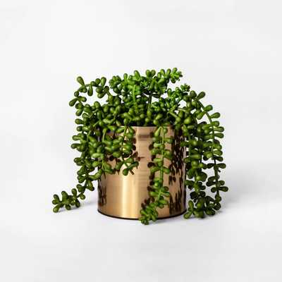 """7"""" x 6.5"""" Artificial String of Pearls Succulent in Pot Green/Gold - Project 62™ - Target"""