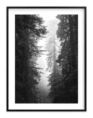 """redwood morning 30 x 40"""" black wood frame - Minted"""