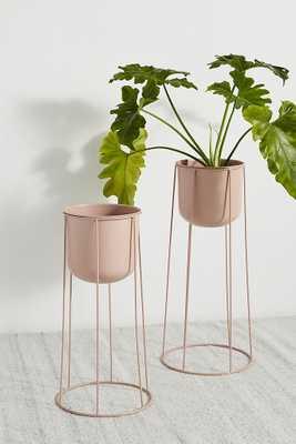 Celeste Plant Stand, Large - Anthropologie