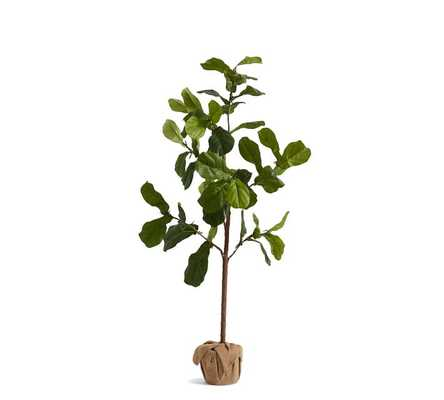 Faux Potted Fiddle Leaf Fig Trees-5.4 ft - Pottery Barn