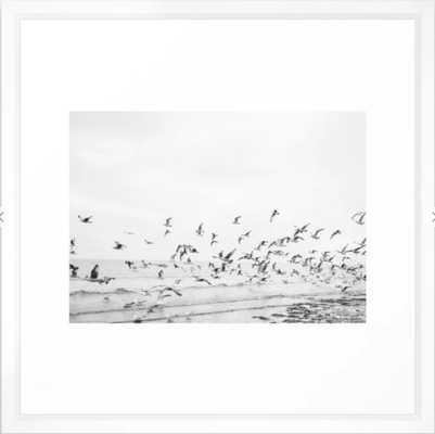 """Seagulls"" | Coastal black and white photo | Film photography | Beach Framed Art Print - Society6"