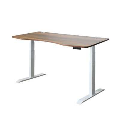 Applegate Ergonomic Height Adjustable Standing Desk - Wayfair