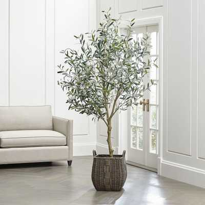 Faux Olive Tree - Crate and Barrel