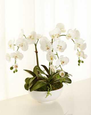 Orchid Phalaenopsis Faux-Floral - Horchow