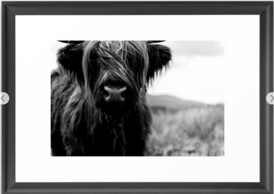 Scottish Highland Cattle Baby - Black and White Animal Photography Framed Art Print - Society6