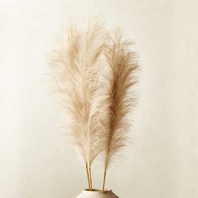 Faux Pampas Grass Taupe Stem Set of 3 - CB2