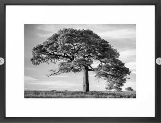 The Tree (Black and White) Framed Art Print - Society6