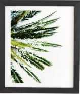 BEVERLY HILLS PALM TREE Black Framed Wall Art By Chelsea Victoria - Wander Print Co.