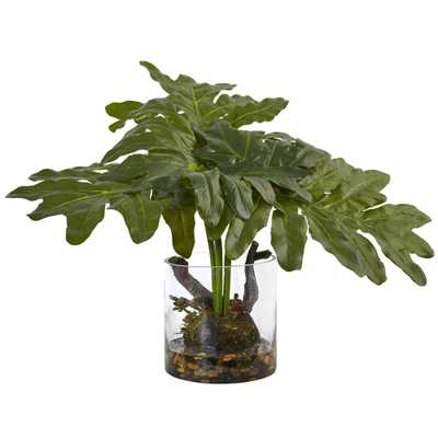 Philodendron Arrangement with Vase - Fiddle + Bloom