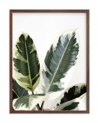 "jack  - 18"" x 24"" - walnut wood frame - Minted"