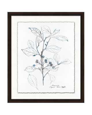 BLUE LEAF SKETCH 1 Framed Art - McGee & Co.