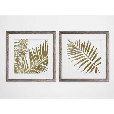 'Golden Frond' 2 Piece Framed Graphic Art Print Set / Brown Framed - Birch Lane