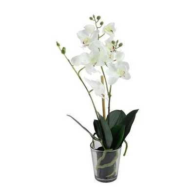 "Northlight 18.5"" Potted Phalaenopsis Orchid Artificial Silk Flower Arrangement in Vase - Target"