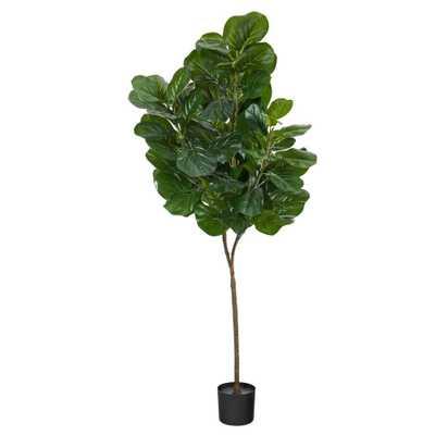 6' Fiddle Leaf Fig Artificial Tree - Fiddle + Bloom